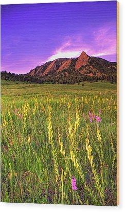 Purple Skies And Wildflowers Wood Print by Scott Mahon