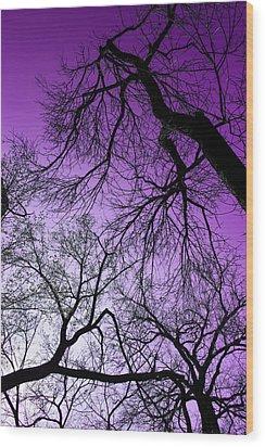 Purple Sky Wood Print