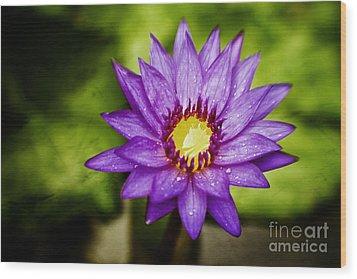 Purple Sunrise Wood Print by Scott Pellegrin