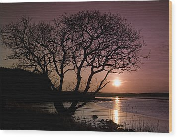 Wood Print featuring the photograph Purple Sunset With Tree And Lake by Gabor Pozsgai