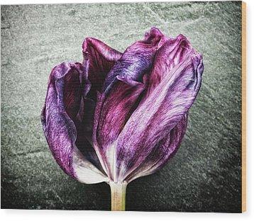 Purple Swirl Wood Print by Karen Stahlros