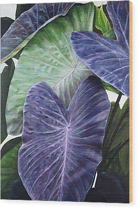 Purple Taro Wood Print by Sandra Blazel - Printscapes