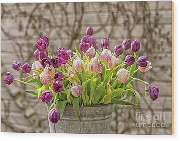 Wood Print featuring the photograph Purple Tulips In A Bucket by Patricia Hofmeester