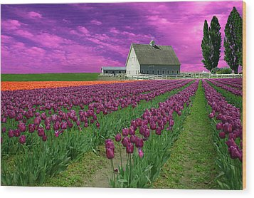 Purple Tulips With Pink Sky Wood Print
