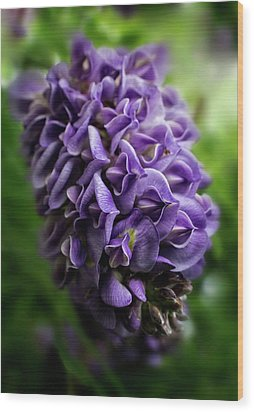 Purple Wisteria Wood Print by Greg and Chrystal Mimbs