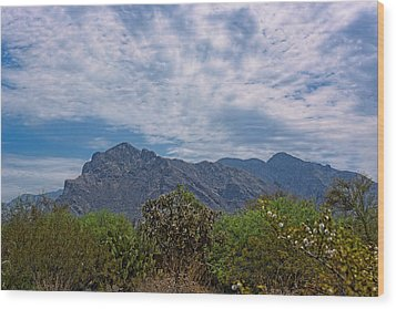Wood Print featuring the photograph Pusch Ridge Morning H26 by Mark Myhaver