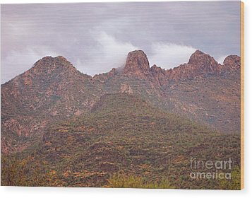 Pusch Ridge Tucson Arizona Wood Print