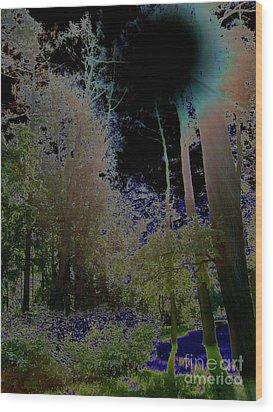 Wood Print featuring the photograph Pushkin Treescape by Robert D McBain