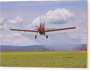 Putting It Down - Ag Pilot - Crop Duster Wood Print by Jason Politte