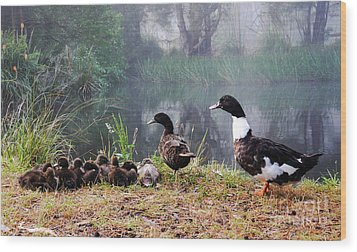 Quack Quack Ducks And A Pond Wood Print by Lexa Harpell