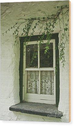 Quaint Window In Ireland Wood Print by Christine Amstutz