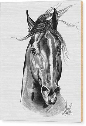 Quarter Horse Head Shot In Bic Pen Wood Print by Cheryl Poland