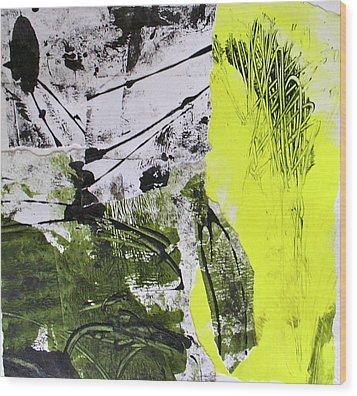 Quarto Iv Wood Print by Mary Sullivan
