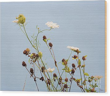 Queen Anne's Lace And Dried Clovers Wood Print by Lise Winne