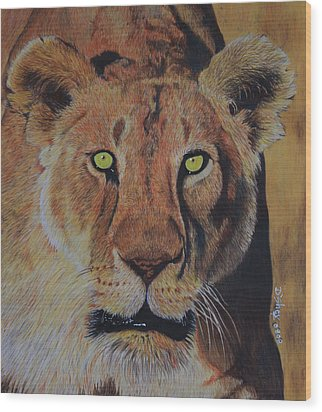 Queen Of The Jungle Wood Print by Don MacCarthy