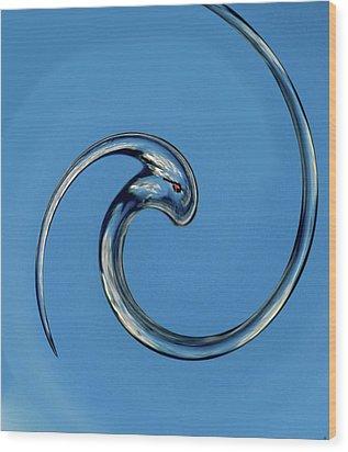 Queet Of The Water Wood Print by Debra     Vatalaro