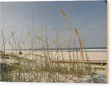 Quiet Beach Wood Print by John Black