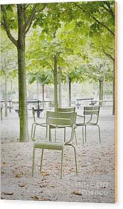 Quiet Moment At Jardin Luxembourg Wood Print by Ivy Ho