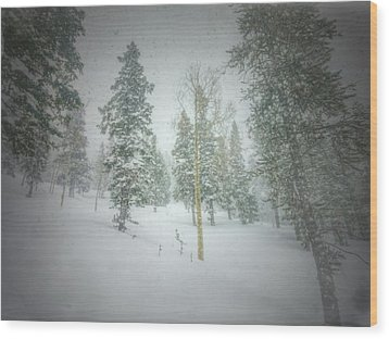 Quiet Turns  Wood Print by Mark Ross