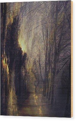 Quo Vadis  -  Memory Lane Wood Print by AugenWerk Susann Serfezi