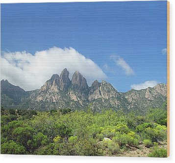 Wood Print featuring the photograph  Organ Mountains Rabbit Ears by Jack Pumphrey