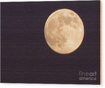 Wood Print featuring the photograph Rabbit In The Moon by Phyllis Kaltenbach