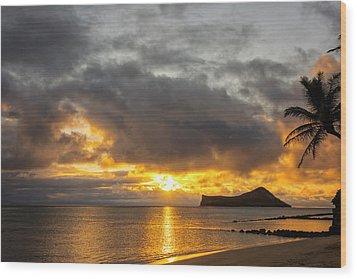 Rabbit Island Sunrise - Oahu Hawaii Wood Print by Brian Harig