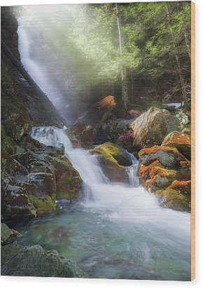 Wood Print featuring the photograph Race Brook Falls 2017 by Bill Wakeley