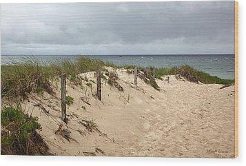 Race Point Beach Provincetown Massachusetts Wood Print by Michelle Wiarda