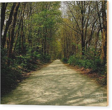 Wood Print featuring the photograph Rails To Trails by Kristine Nora