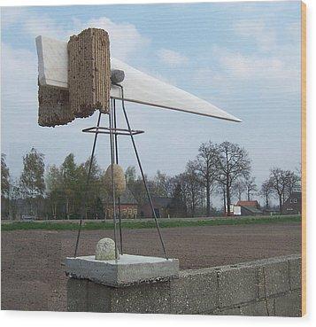 Rain Balance Wood Print by Jos Hamann
