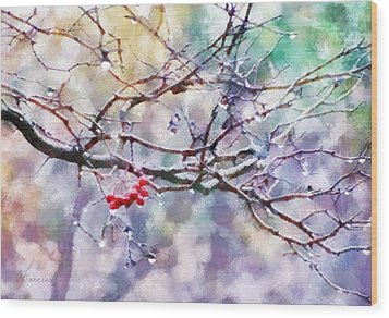 Rain Berries Wood Print by Francesa Miller