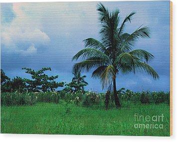 Rain Cloudsover Dominica Wood Print by Thomas R Fletcher