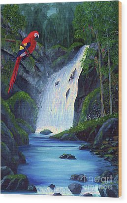 Rain Forest Macaws Wood Print by Stanton Allaben
