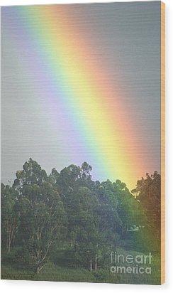 Rainbow And Misty Skies Wood Print by Erik Aeder - Printscapes