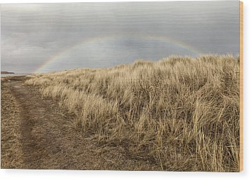 Rainbow By The Seaside Wood Print