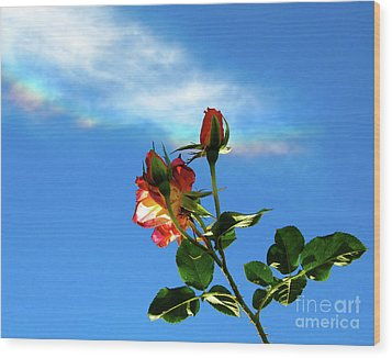 Rainbow Cloud And Sunlit Roses Wood Print by CML Brown