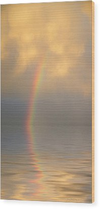 Rainbow Dream Wood Print by Jerry McElroy