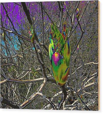 Rainbow Explosion Wood Print by JoAnn SkyWatcher