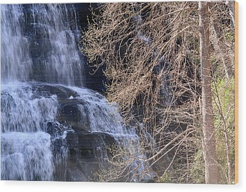 Rainbow Falls In Gorges State Park Nc 03 Wood Print by Bruce Gourley