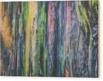 Wood Print featuring the photograph Rainbow Forest by Ryan Manuel