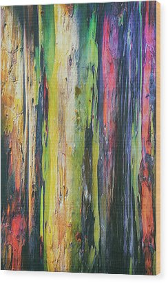 Wood Print featuring the photograph Rainbow Grove by Ryan Manuel