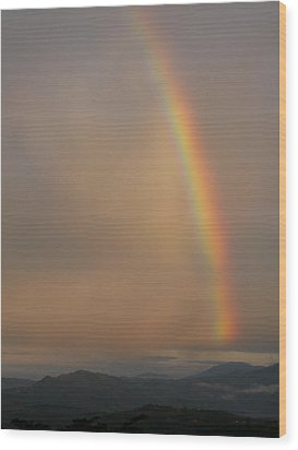 Rainbow No.1 Wood Print by Gregory Young