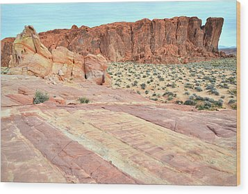 Wood Print featuring the photograph Rainbow Of Color In Valley Of Fire by Ray Mathis