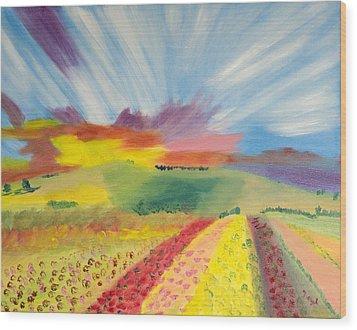 Rainbow Of Flowers Wood Print by Meryl Goudey