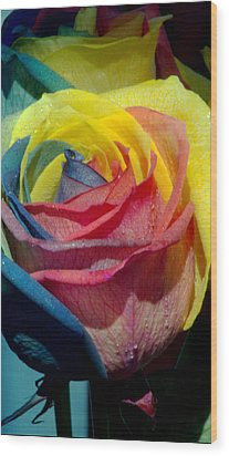 Rainbow Of Love 2 Wood Print by Karen Musick