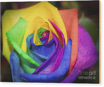 Rainbow Rose In Paint Wood Print