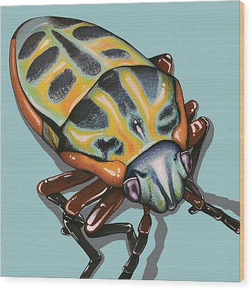 Wood Print featuring the painting Rainbow Shield Beetle by Jude Labuszewski