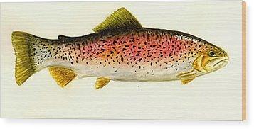 Rainbow Trout Wood Print by Michael Vigliotti