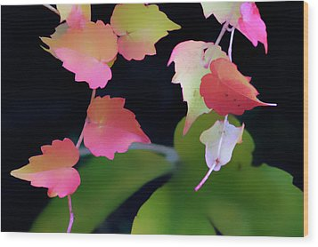 Rainbow Vine Leaves Wood Print
